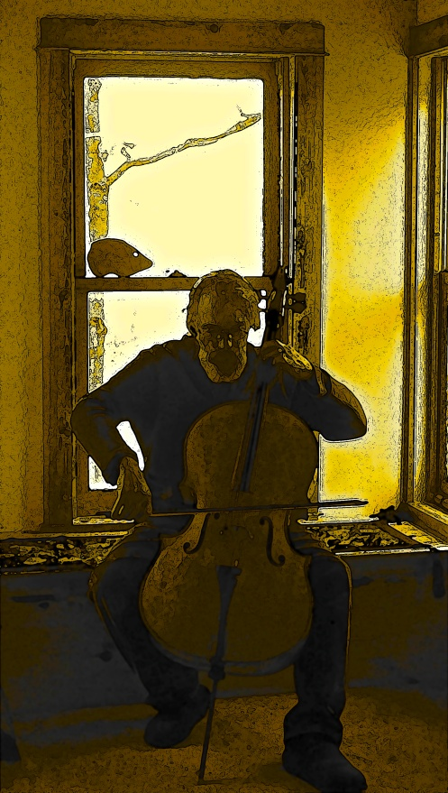 Cello Player