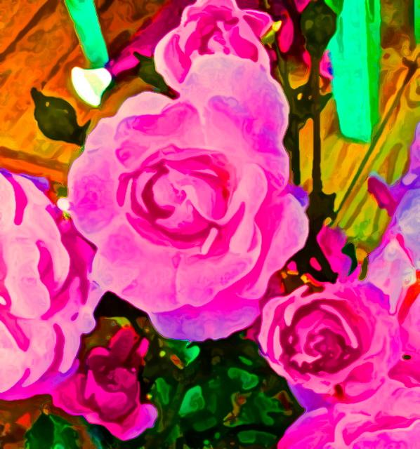 Chrissy's Roses