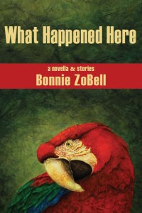 Final-Cover-What-happened-Here